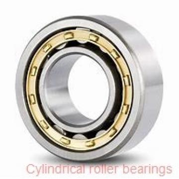30 mm x 72 mm x 27 mm  FBJ NU2306 cylindrical roller bearings