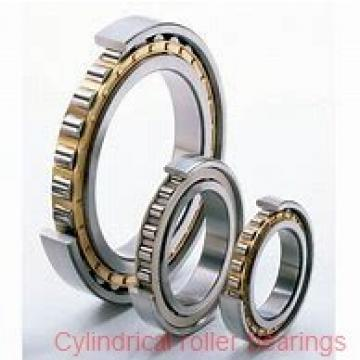 95 mm x 200 mm x 67 mm  SIGMA NU 2319 cylindrical roller bearings